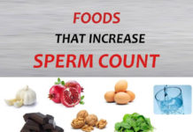Good Diet Can Increase Sperm Count