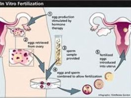 How Laboratory Conditions Can Lead to Successful IVF Treatment?