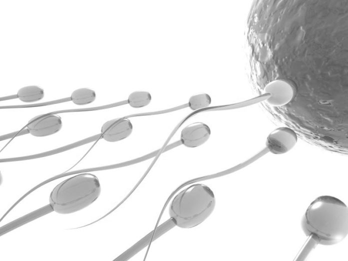 Asthenospermia Cure to Improve Your Sperm Count