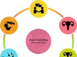 In Vitro Fertilization (IVF) & its Process