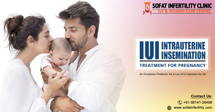 An Overview of IUI as an Infertility Treatment