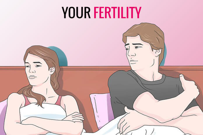 Your Fertility