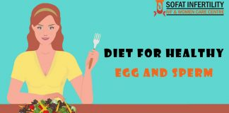 Diet For Healthy Egg And Sperm - sofatinfertility.com