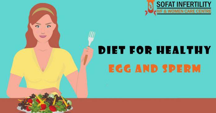 Diet For Healthy Egg And Sperm - sofatinfertility.com