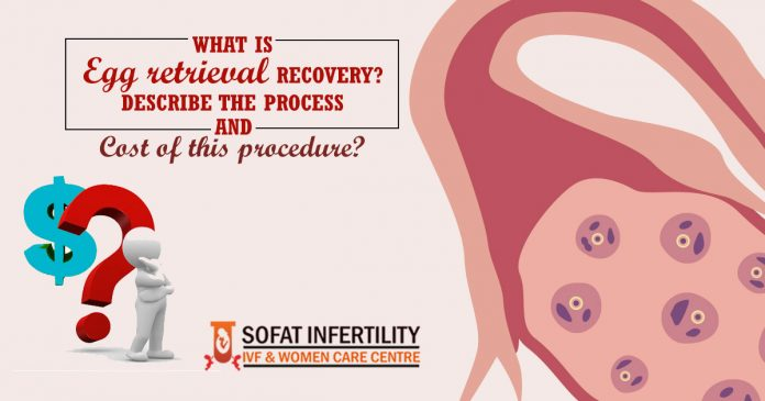 What is Egg retrieval Recovery - Describe the Process and Cost of this procedure