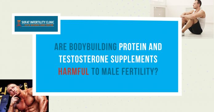 Are bodybuilding protein and testosterone supplements are harmful to male fertility