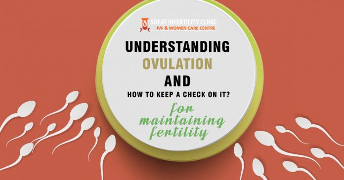 Understanding ovulation and how to keep a check on it for maintaining fertility