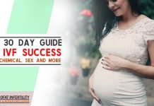 The 30 Day Guide To IVF Success Diet, Chemical, sex and more.jpg