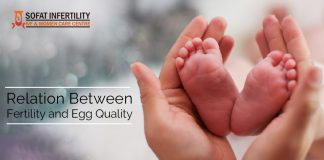 Relation between fertility and egg quality