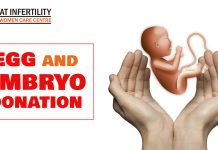Egg and embryo donation copy