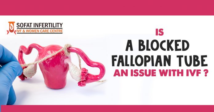 Is a Blocked Fallopian Tube an Issue With IVF