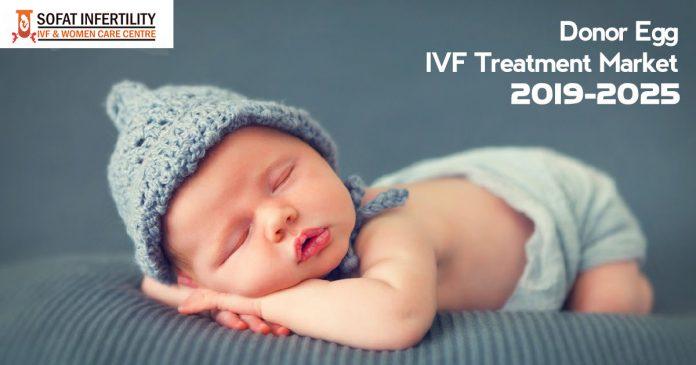 Donor Egg IVF Treatment Market - 2019-2025