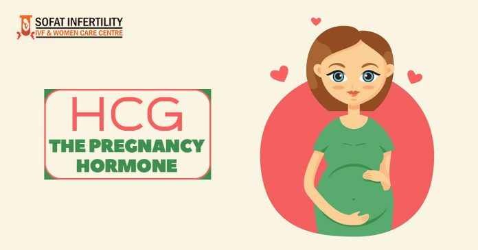 HCG – The Pregnancy hormone