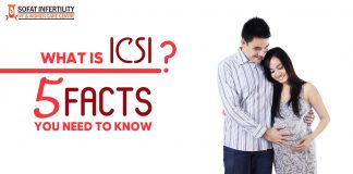 What Is ICSI 5 Facts You Need To Know