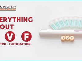 Everything about IVF