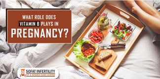 What role does Vitamin B plays in Pregnancy