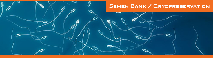 Semen-Bank-Cryopreservation