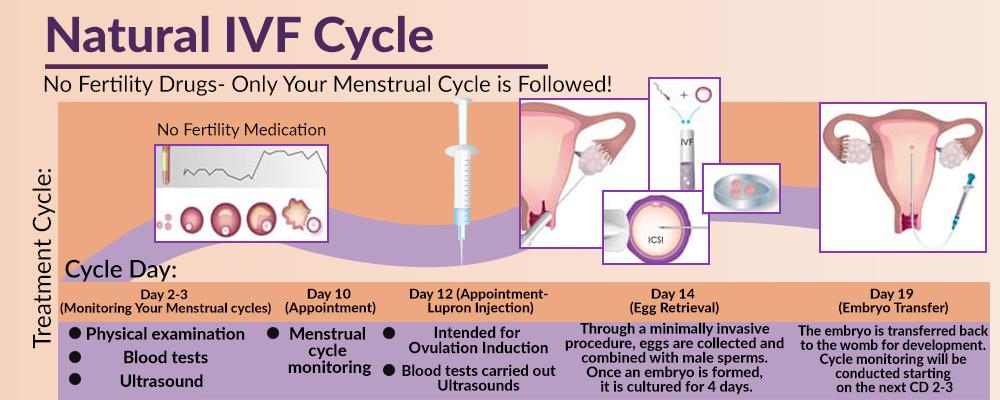 Drug-Free Infertility Treatment in Punjab, India - Natural