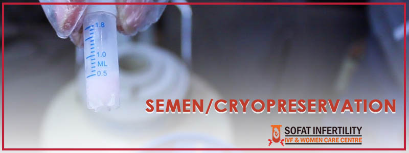 Semen Bank Cryopreservation