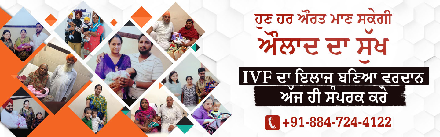 First IVF Centre In Punjab